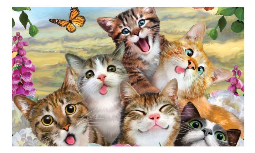 cat 3d selfie puzzle - look at them mugs!