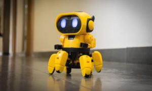 Kiko.893 Exploring Robot Friend