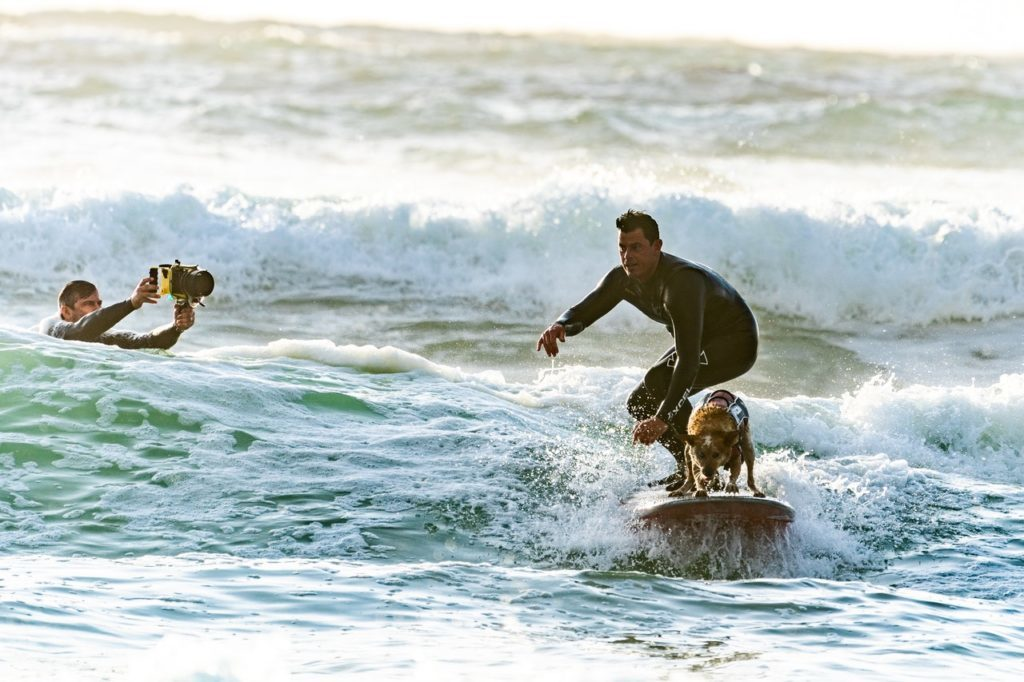 A surfer riding a wave... with his dog